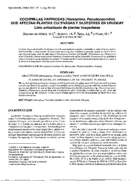 Cochinillas Harinosas (Homoptera, Pseudococcidae) que afectan plantas cultivadas y silvestres en Uruguay lista actualizada de plantas hospederas