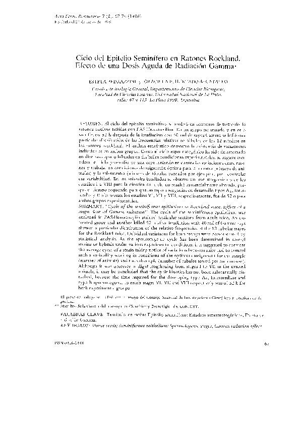 Ciclo del epitelio seminífero en ratones Rockland. Efecto de una dosis aguda de radiación Gamma